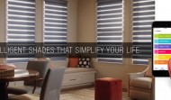 Motorized Blinds – Everything You Need To Know