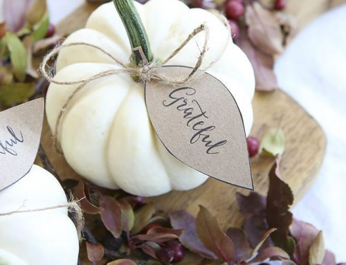 Get Ready for Thanksgiving with These Decorating Tips