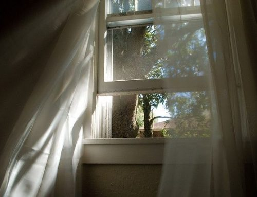 4 Reasons to Invest in Window Coverings